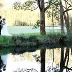 cost effective wedding packages