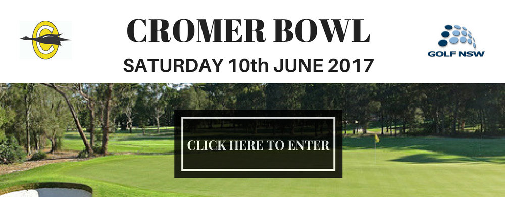 2017 CROMER BOWL web slider